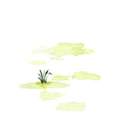 File:SwampB1 (2).jpg