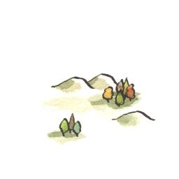 File:Shire6 (2).jpg