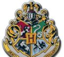 Hogwarts School Role Play Wiki