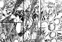 Jūji Zan (manga)