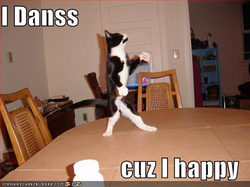 File:Funny-pictures-dancing-cat.jpg