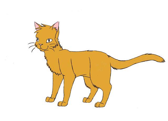 File:Browncat.jpg