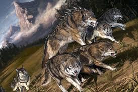 File:Dire wolf pack.jpeg