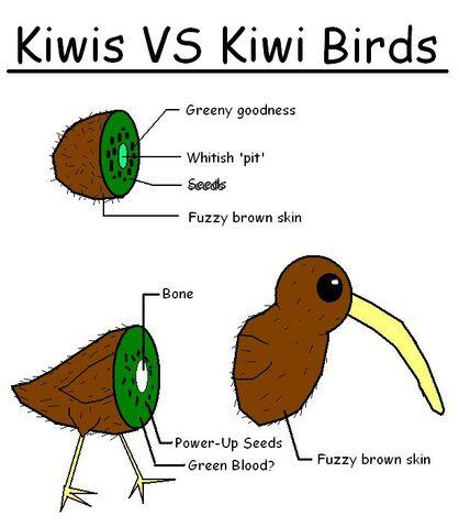 File:Kiwi VS Kiwi Bird by shibbynempahcold.jpg