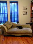 Wacky new furniture