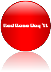 Red nose day 11