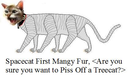 File:Spacecat First Mangy Fur Pissed Off.jpg