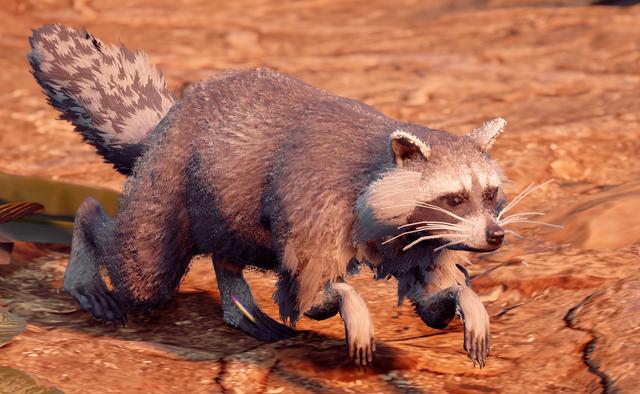 File:Raccoon.png
