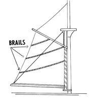 Brail (PSF)