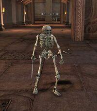 Dungeonskeleton