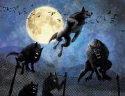 Werewolf-pack