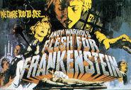 Fleshforfrankensteinposter-1-
