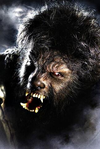 File:Wolf Man (2009) 01.jpg