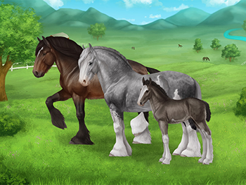 File:Shires-example-small.png