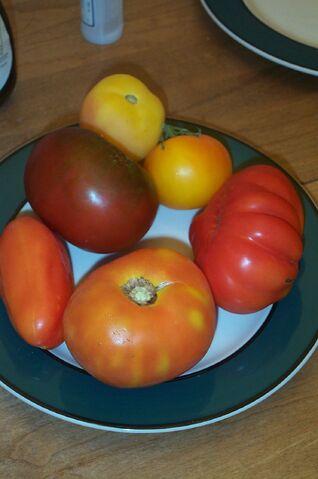 File:Heirloom tomatoes.jpg