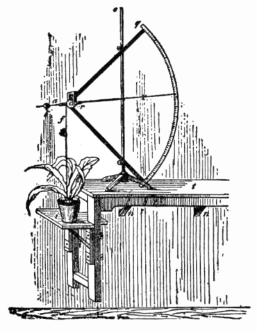 File:NSRW Auxanometer.png