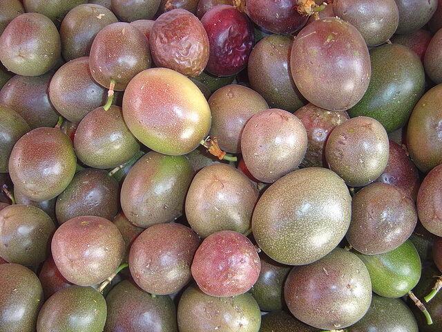 File:800px-Passiflora edulis dsc07776.jpg