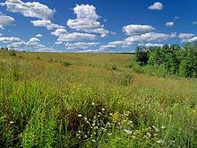 File:Flickr - Nicholas T - Prairie Walk (3).jpg