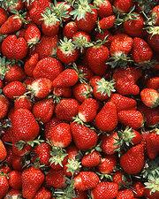 220px-Chandler strawberries