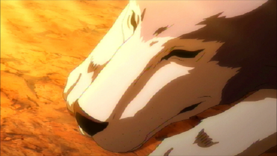 File:Wolf King 4.png