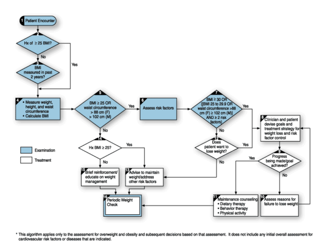 File:Assessment and treatment algorithm for overweight and obesity.png