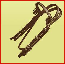 1star Western bridle