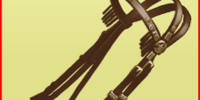 1* Western Bridle