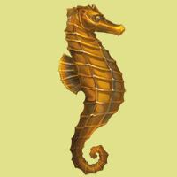 File:Hippocampe.png
