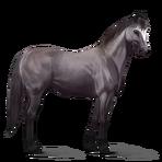 Quarter Horse.Mausgrau.Altes Design