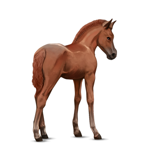 Datei:Connemara Pony Fuchs Fohlen Altes Design.png