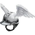 Pegasusaccount 2.png