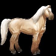 Mustang Palomino Alt