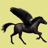 Mustang Rappe Pegasus Altes Design 1