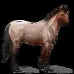 Quarter Horse.Roan.Altes Design