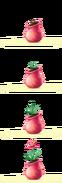 Das magische Gewächshaus Howrse Rosa Samen 2