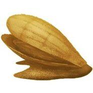 Sandmuschel