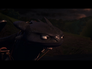 Toothless(55)