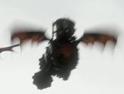 Gobber Riding Grump