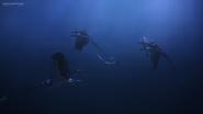 Trapped Seashocker 111
