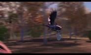 Dustbrawler 043