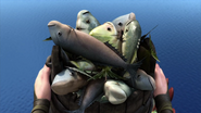 A bucket full with fish