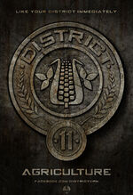 District Eleven