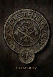 District7