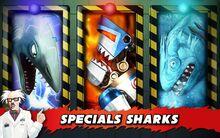 Secret Shark