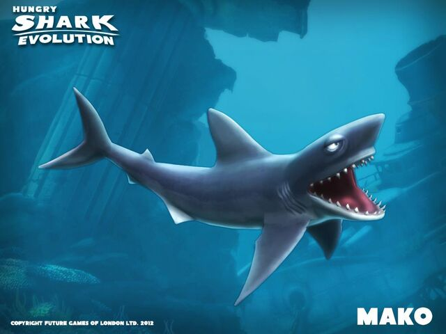 File:Mako Shark.jpg