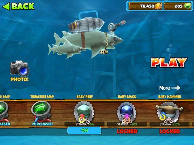 File:Baby Reef Shark.jpg