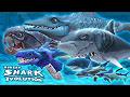 All sharks evo
