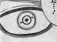Niels' eyes