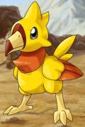 File:Fire Bird1.png