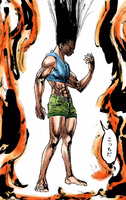 Adult Gon HXH volume 29 colored.png